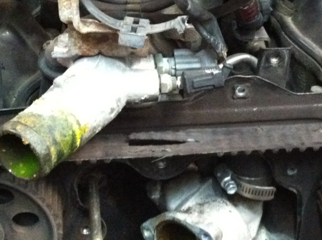 Timing Belt:  Better Safe than Sorry !
